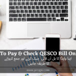 How To Pay And Check QESCO Online Bill?